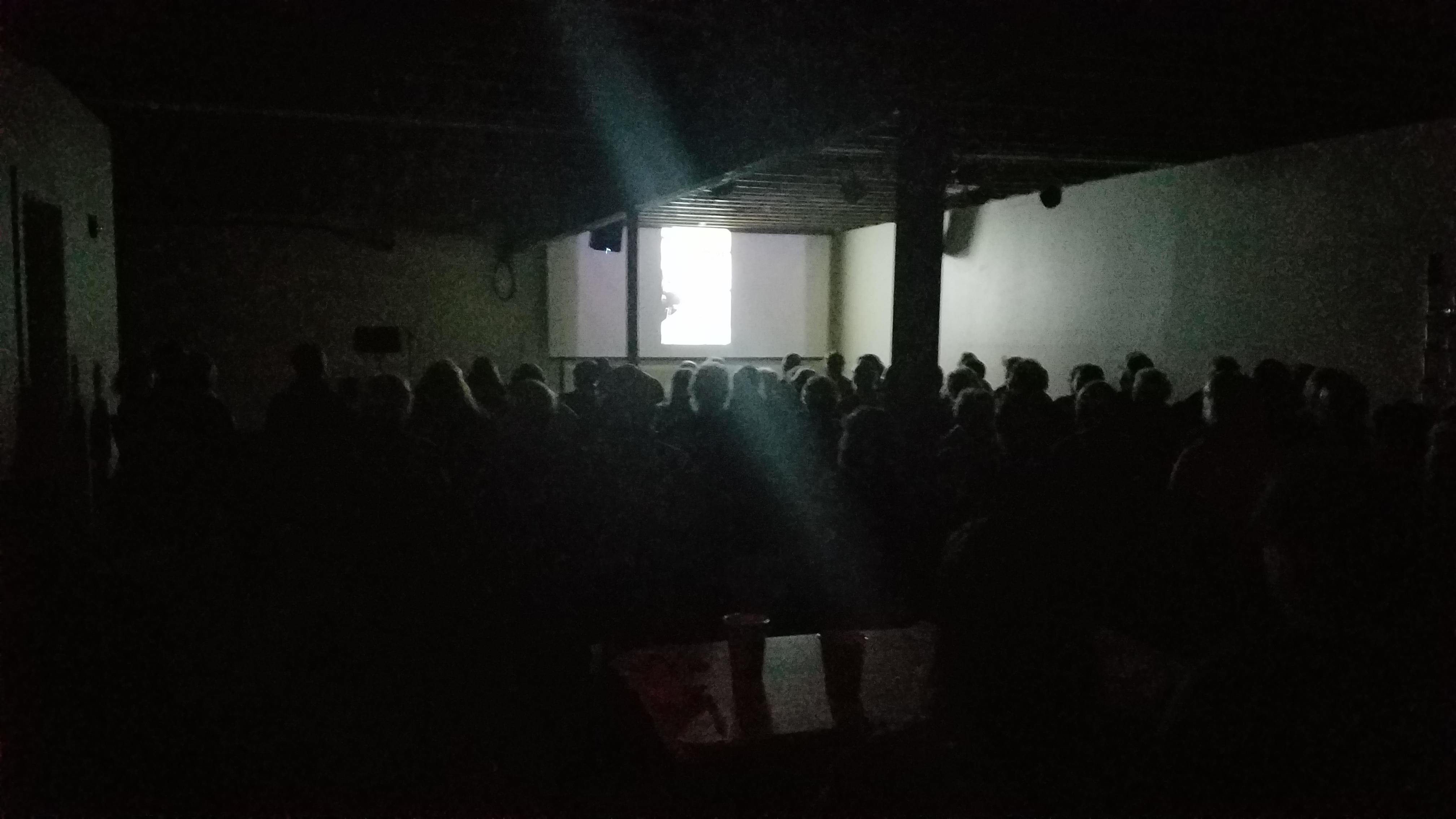 CrowdAtFilm2